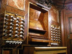 organo.-6