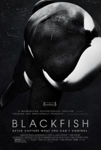 Blackfish-916683539-large