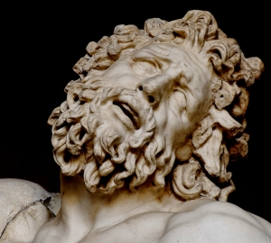 laocoon_pio-clementino_inv1059-1064-1067_n6